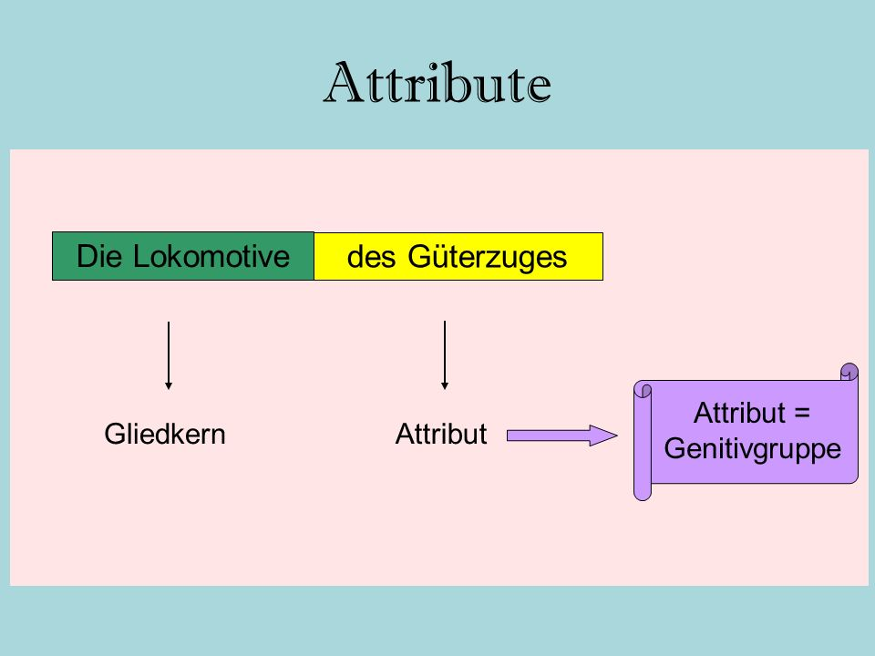 Attribut = Genitivgruppe