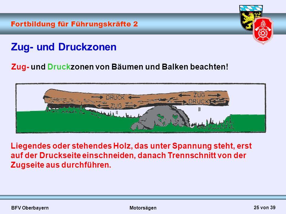 Zug- und Druckzonen Zug- und Druckzonen von Bäumen und Balken beachten!