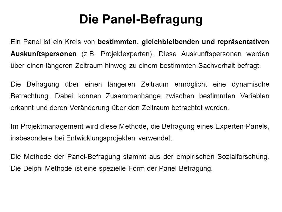 Die Panel-Befragung