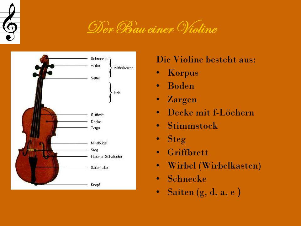 Der Bau einer Violine Die Violine besteht aus: Korpus Boden Zargen