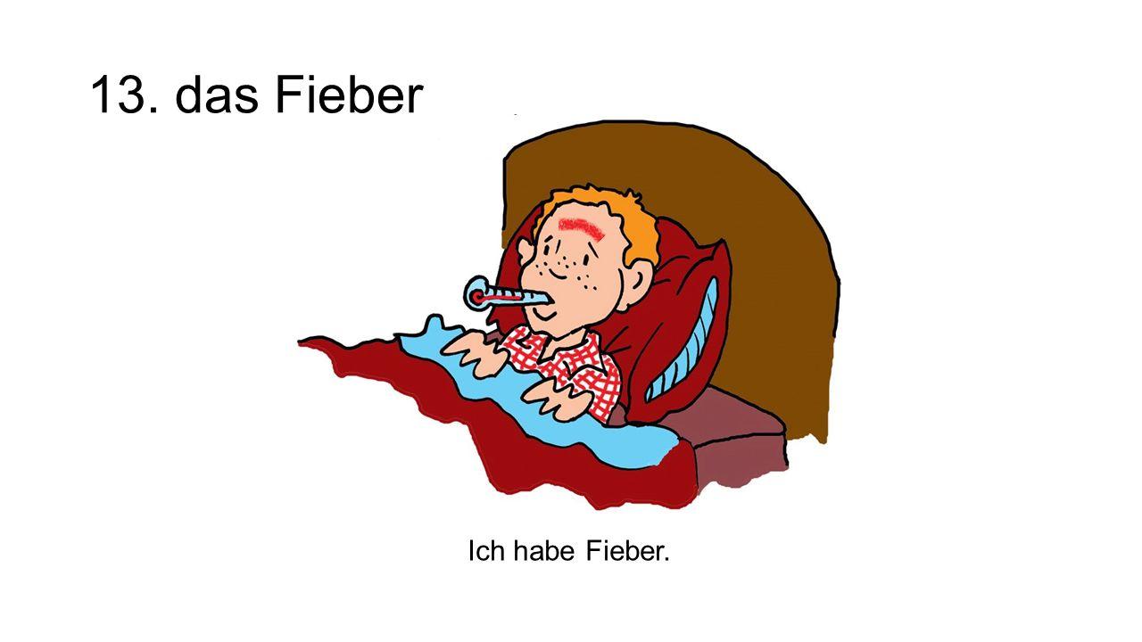 13. das Fieber The fever Ich habe Fieber.