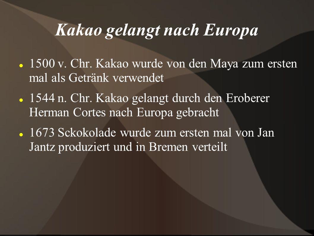 Kakao gelangt nach Europa