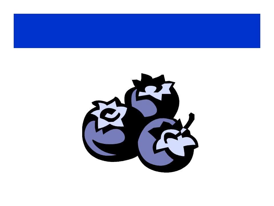 Die Blaubeeren