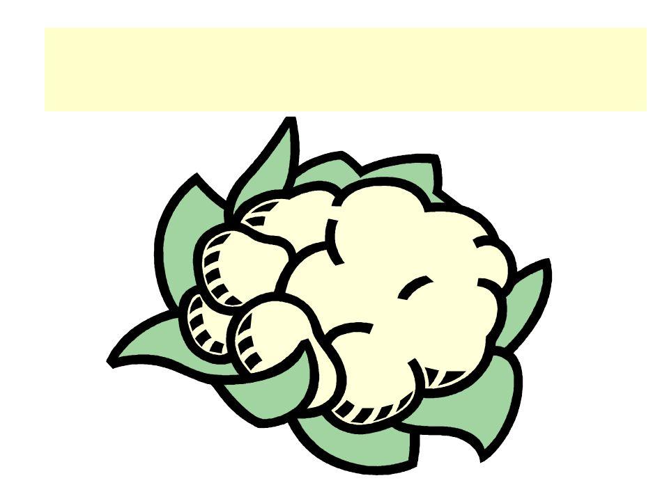 Der Blumenkohl