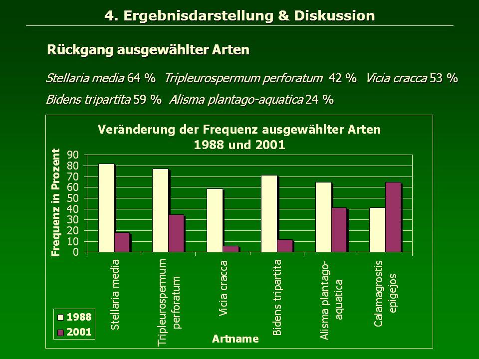 4. Ergebnisdarstellung & Diskussion
