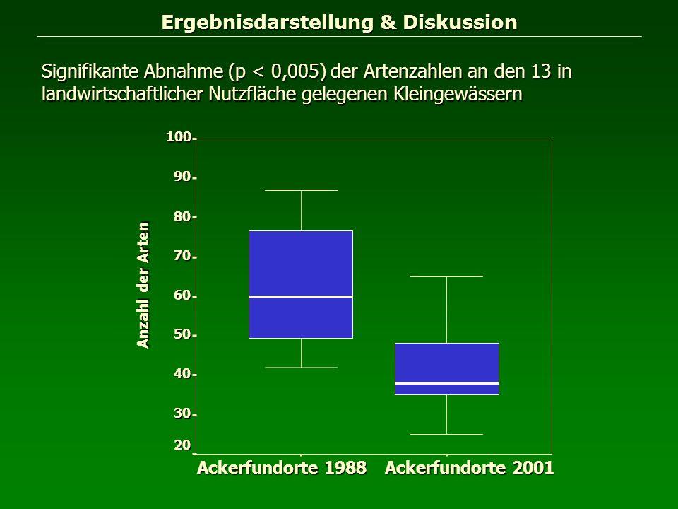 Ergebnisdarstellung & Diskussion