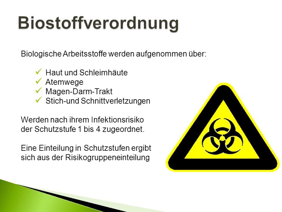 Biostoffverordnung Biologische Arbeitsstoffe werden aufgenommen über: