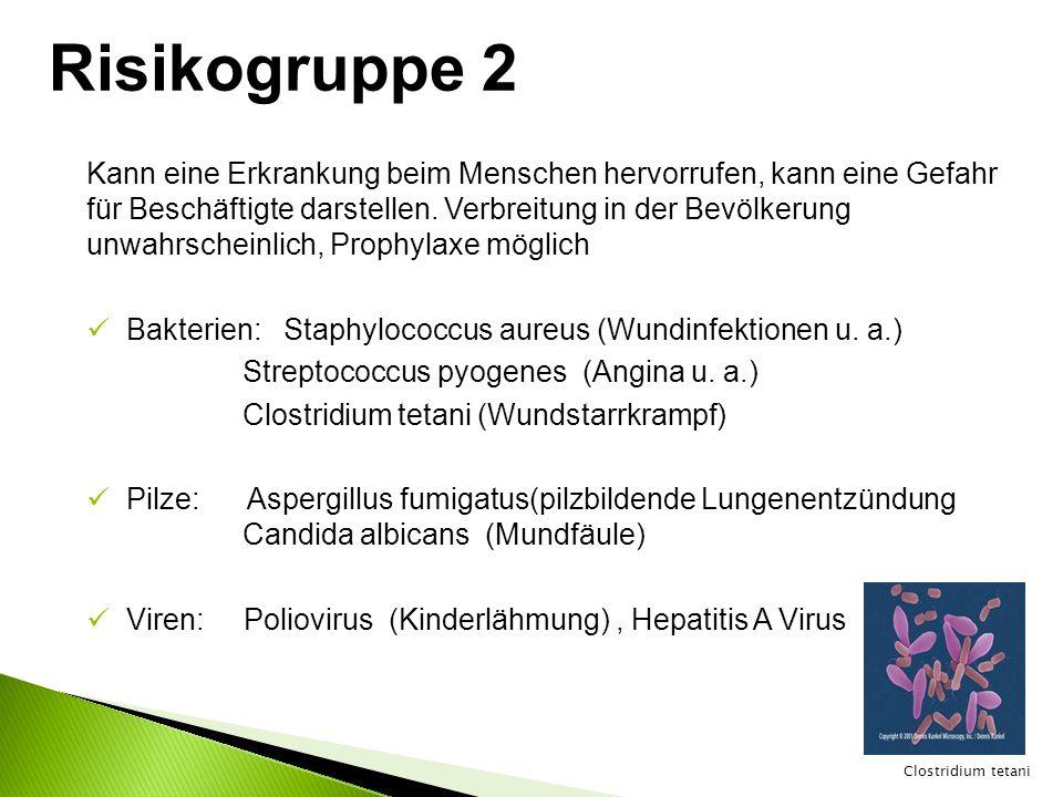 Risikogruppe 2