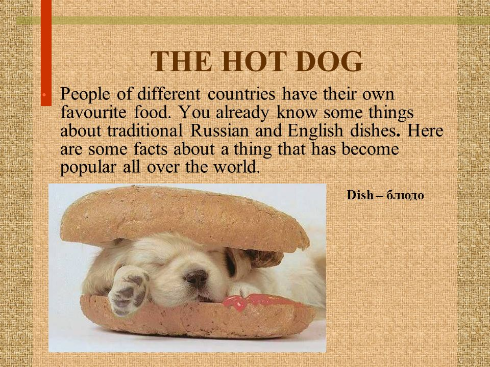 THE HOT DOG