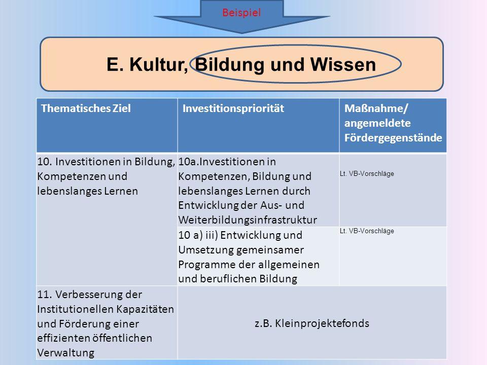 E. Kultur, Bildung und Wissen