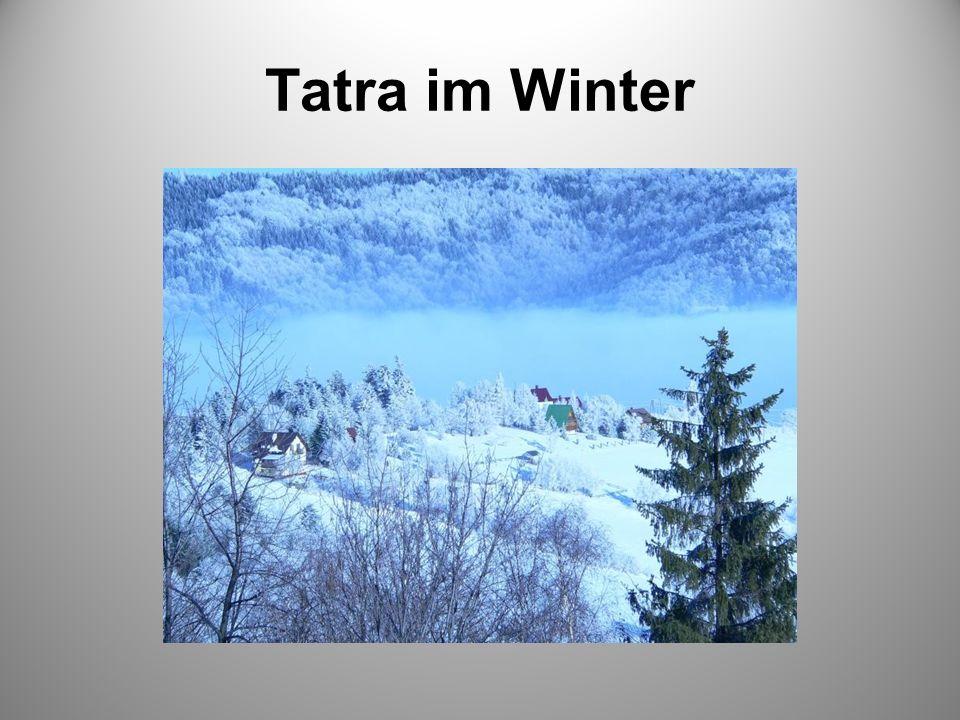 Tatra im Winter