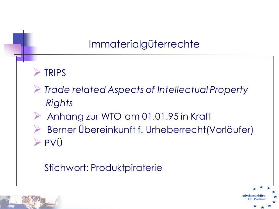 Immaterialgüterrechte