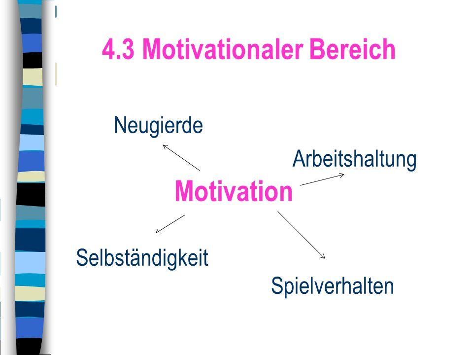 4.3 Motivationaler Bereich