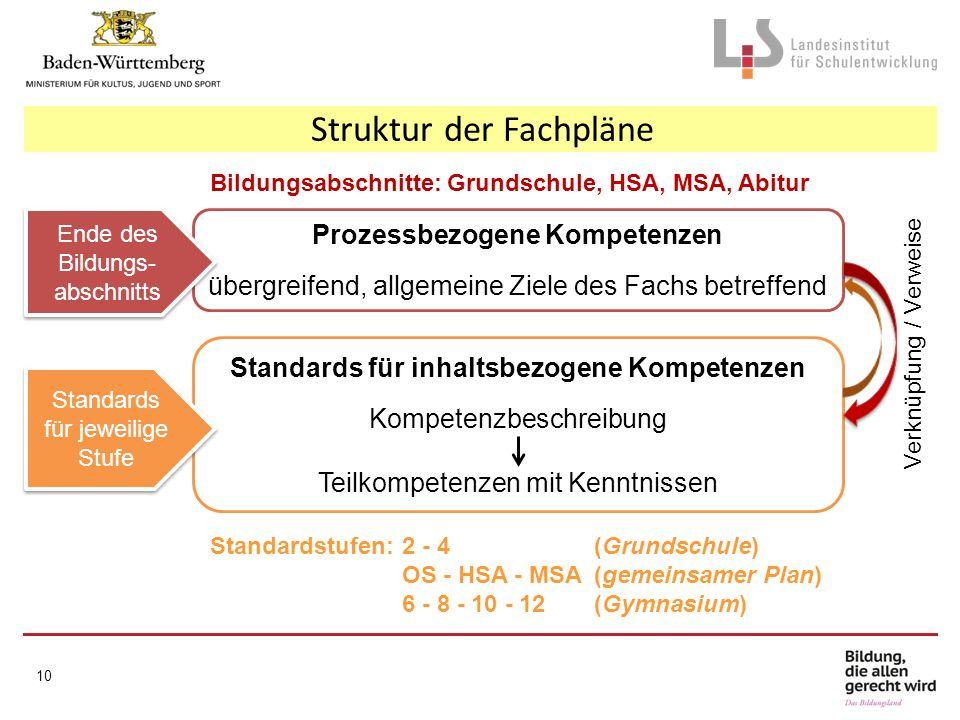 Prozessbezogene Kompetenzen Standards für inhaltsbezogene Kompetenzen
