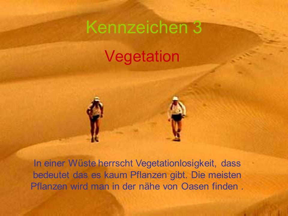 Kennzeichen 3 Vegetation