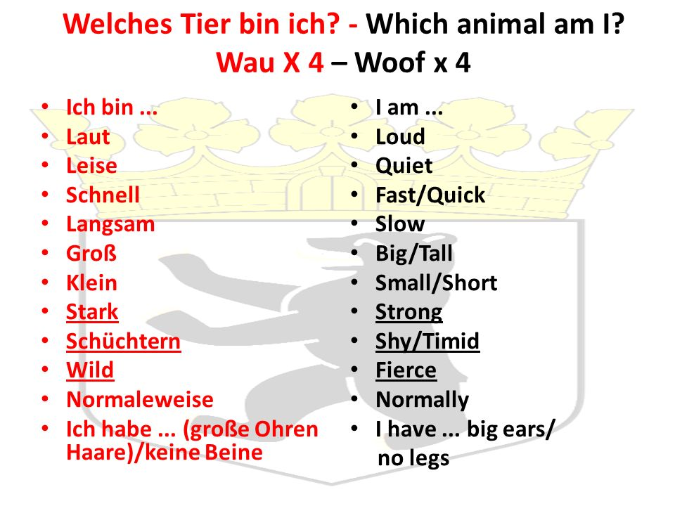 Welches Tier bin ich - Which animal am I Wau X 4 – Woof x 4
