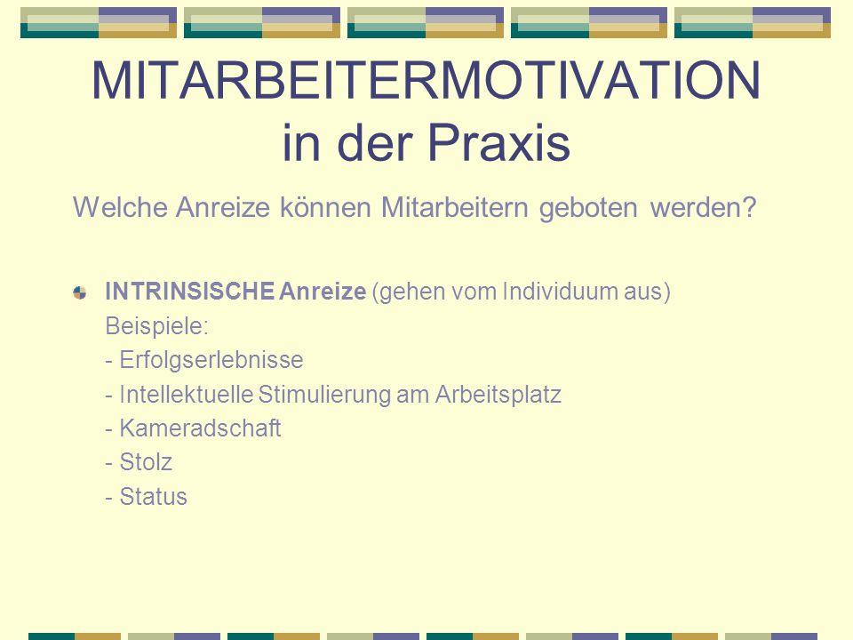 MITARBEITERMOTIVATION in der Praxis