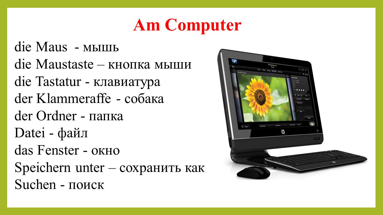 Am Computer die Maus - мышь die Maustaste – кнопка мыши