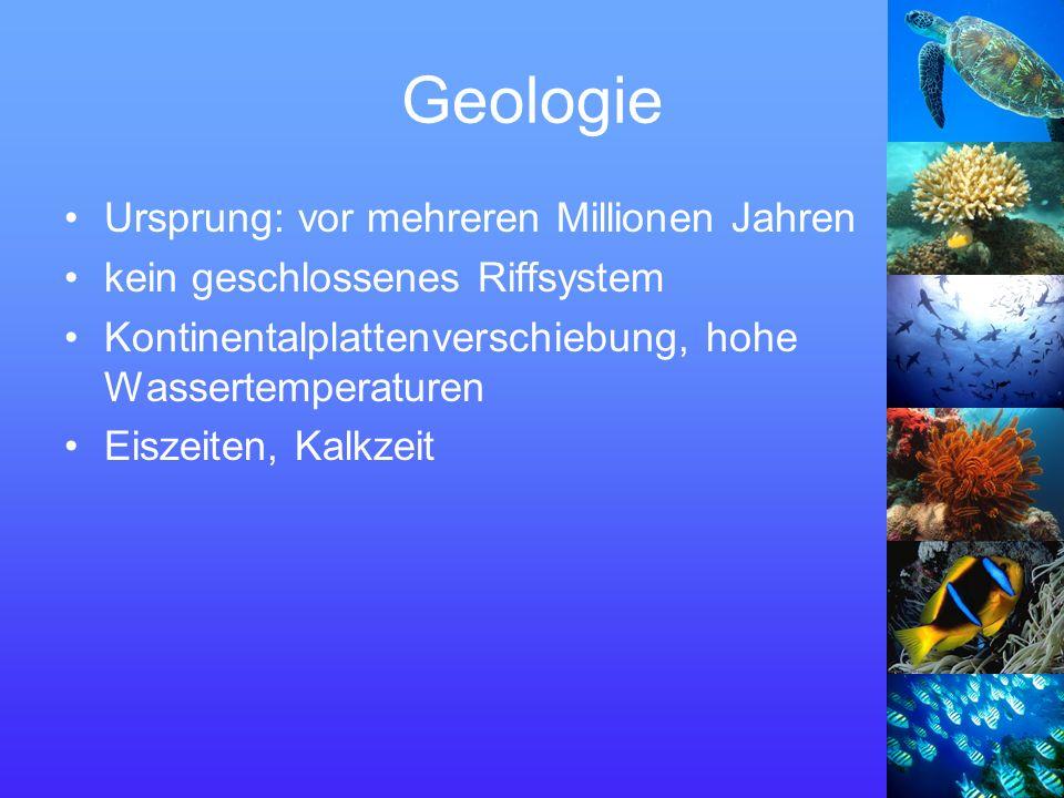 Geologie Ursprung: vor mehreren Millionen Jahren