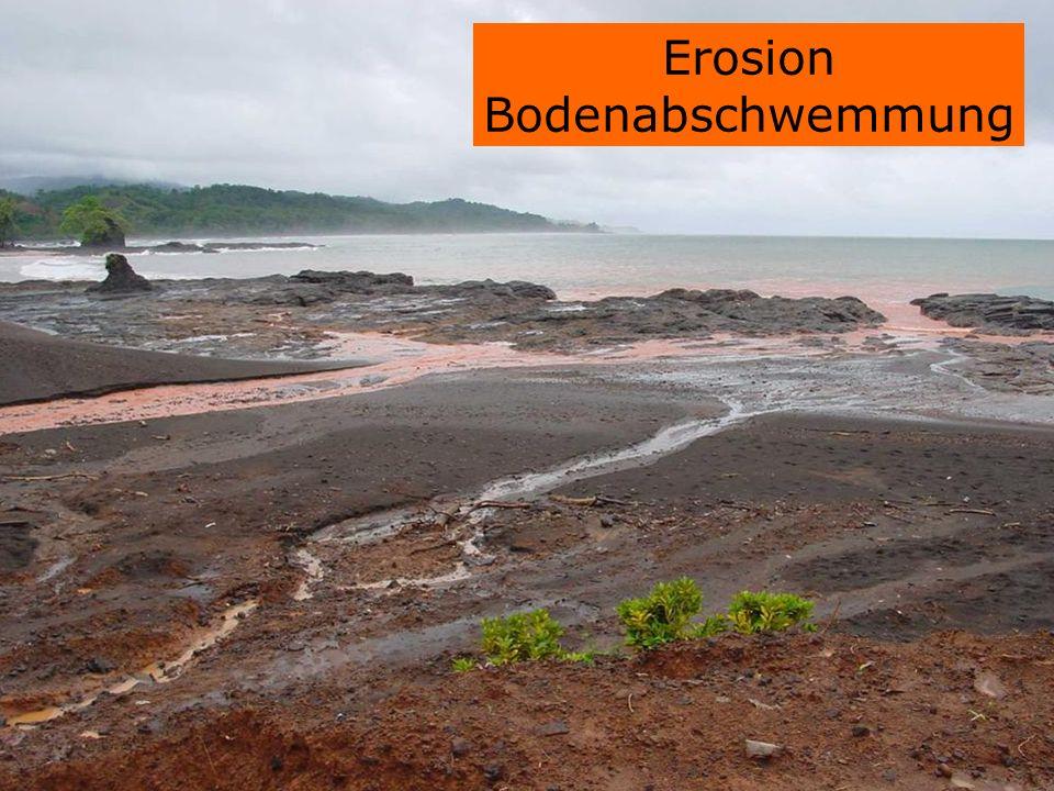 Erosion Bodenabschwemmung