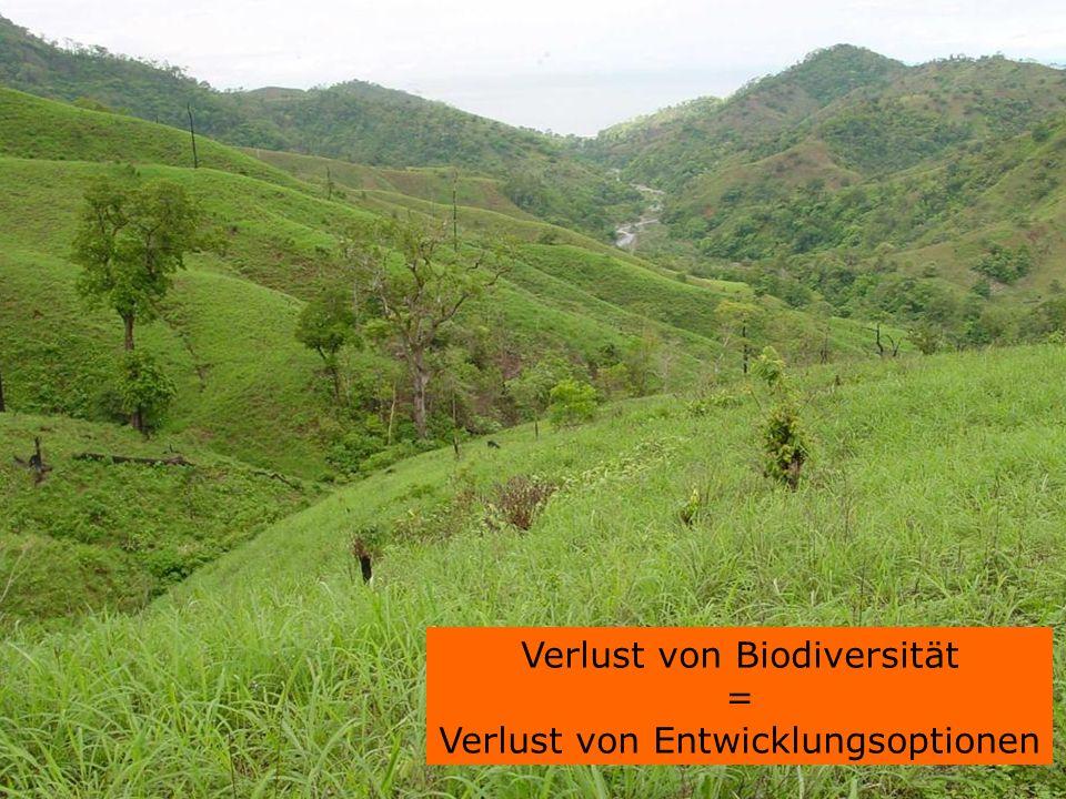 Verlust von Biodiversität = Verlust von Entwicklungsoptionen