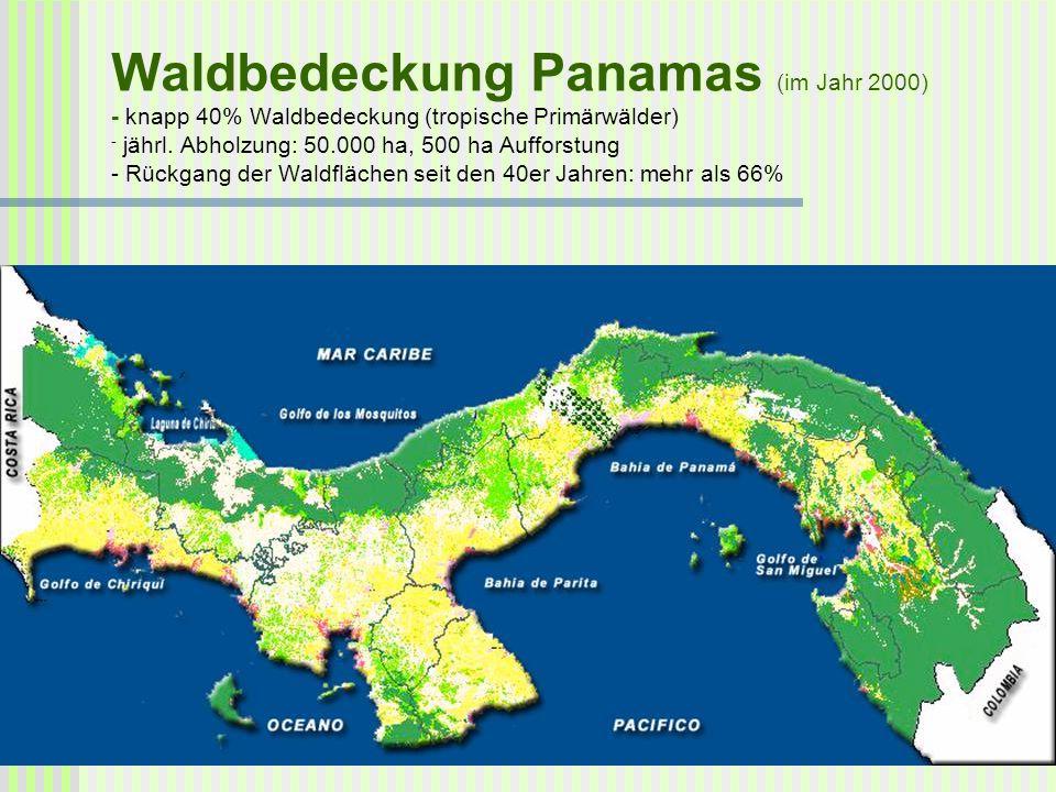 Waldbedeckung Panamas (im Jahr 2000) - knapp 40% Waldbedeckung (tropische Primärwälder) - jährl.