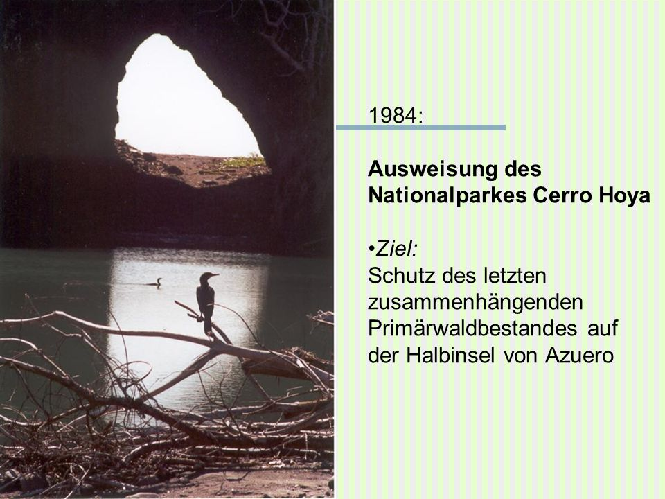 1984: Ausweisung des. Nationalparkes Cerro Hoya. Ziel: Schutz des letzten. zusammenhängenden. Primärwaldbestandes auf.