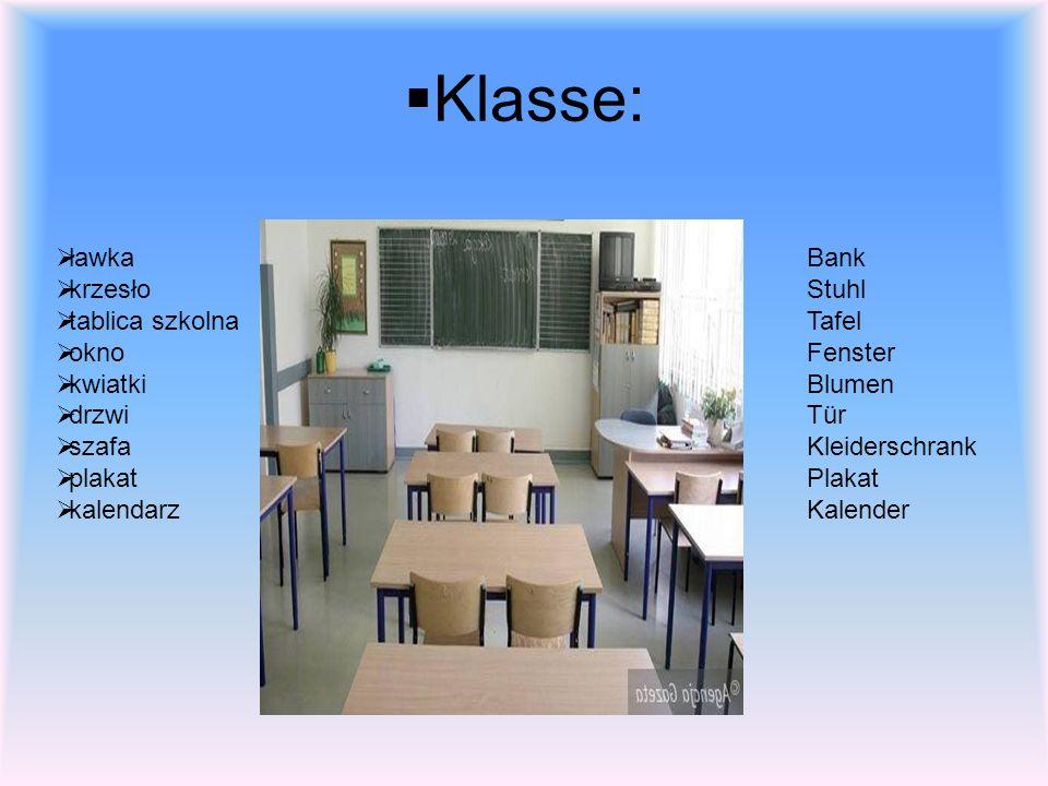 Klasse: ławka krzesło tablica szkolna okno kwiatki drzwi szafa plakat