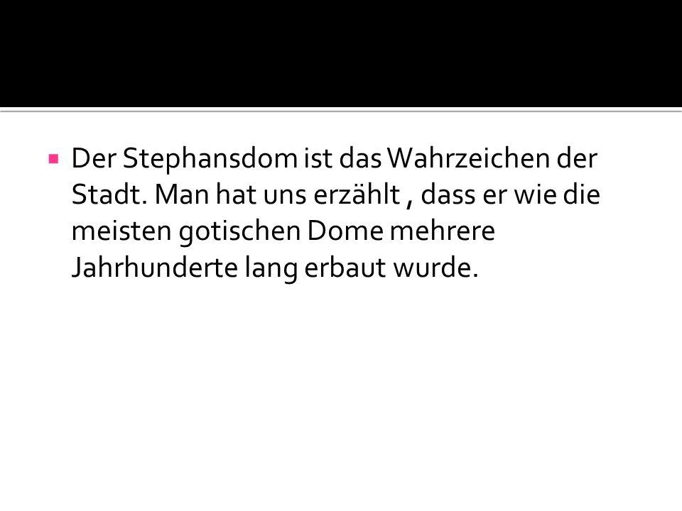 Der Stephansdom ist das Wahrzeichen der Stadt