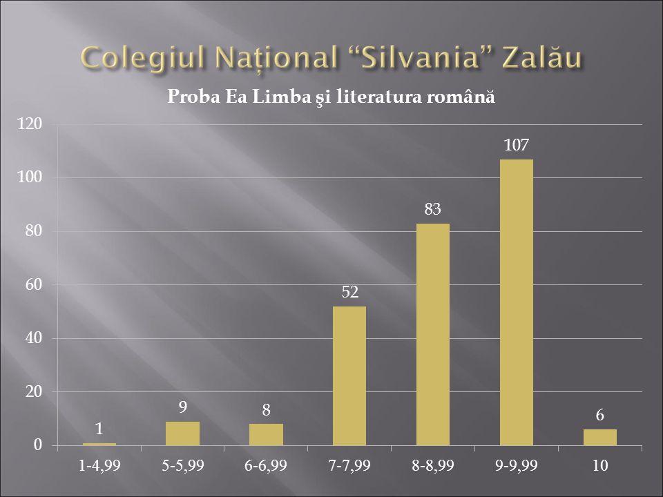 Colegiul Naţional Silvania Zalău