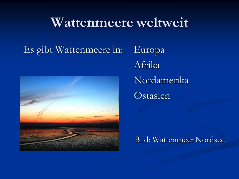 Wattenmeere weltweit Es gibt Wattenmeere in: Europa Afrika Nordamerika