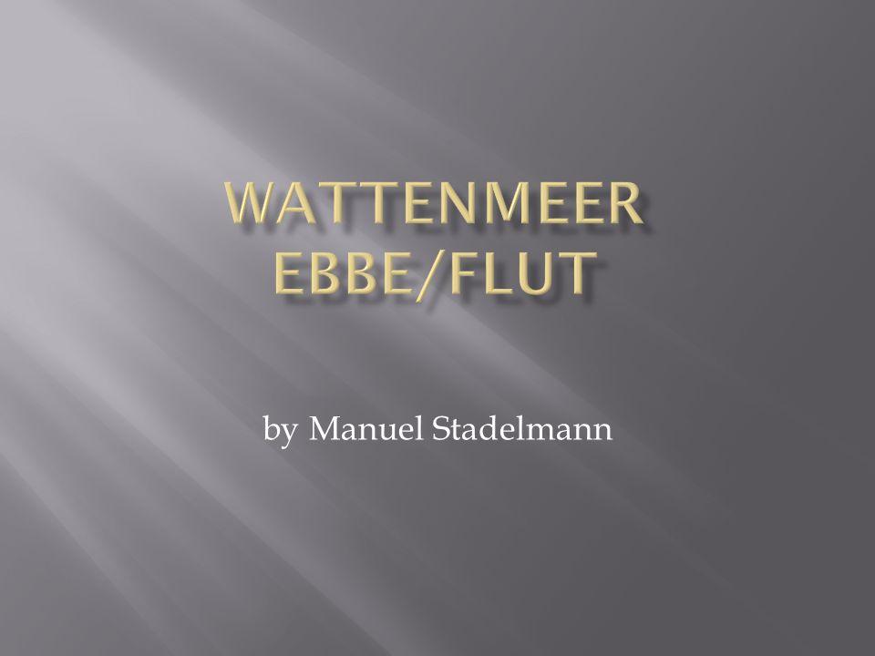 WattenmeER Ebbe/flut by Manuel Stadelmann