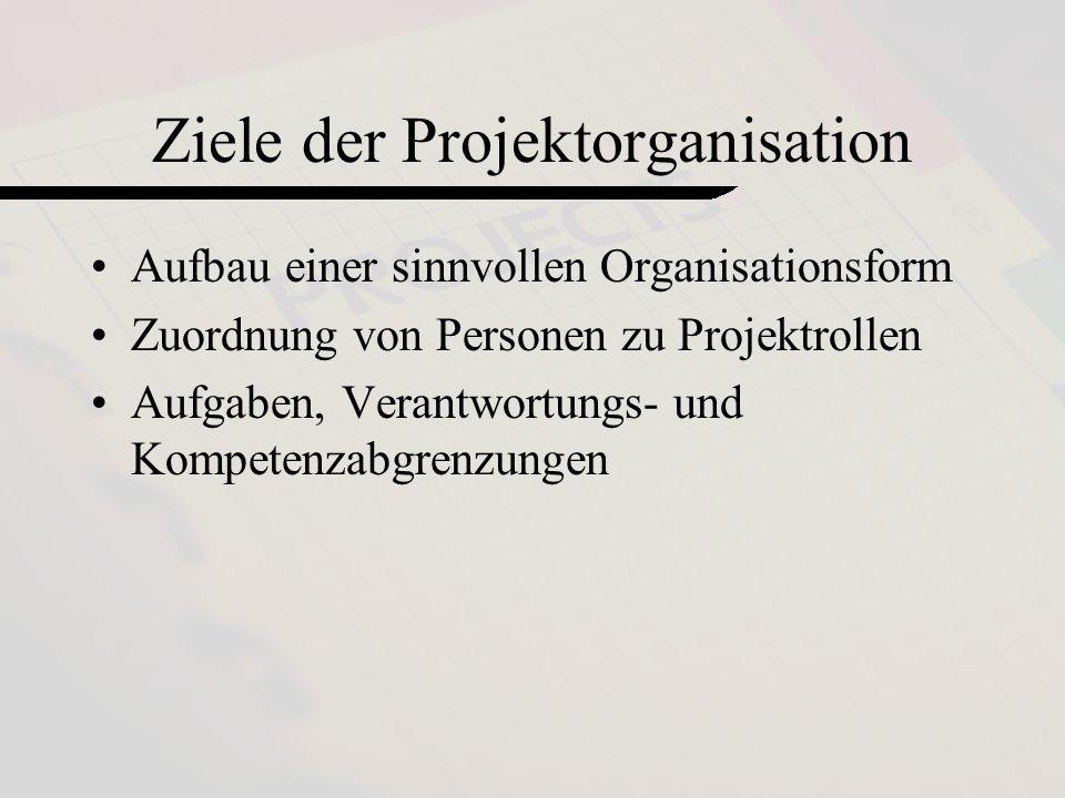 Ziele der Projektorganisation