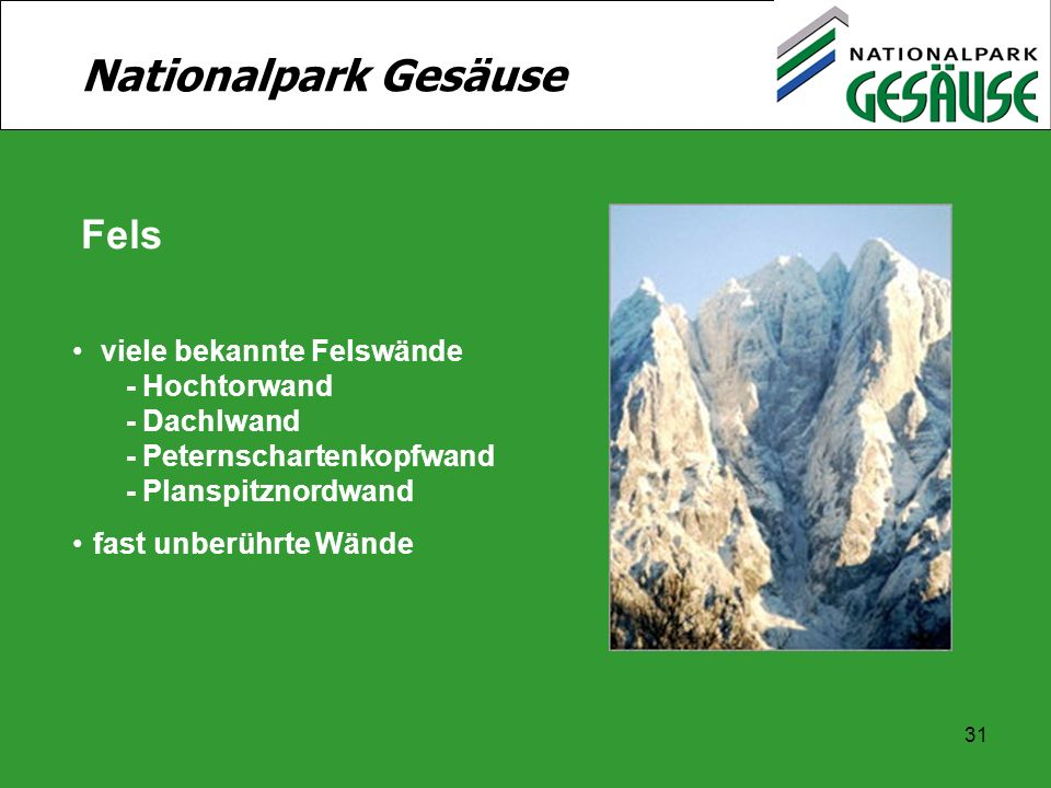 Nationalpark Gesäuse Fels