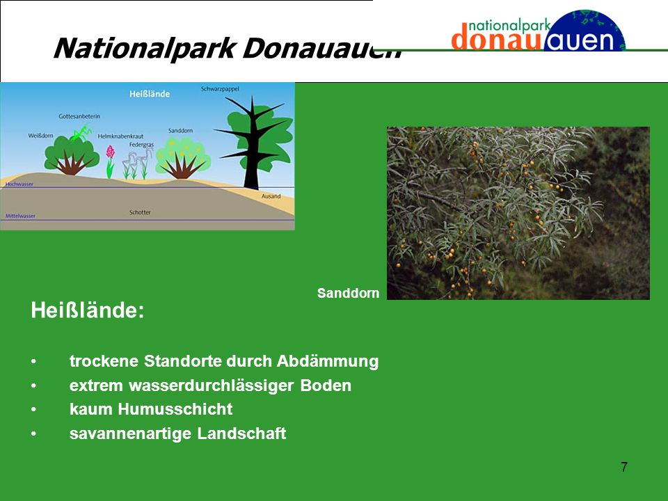 Nationalpark Donauauen