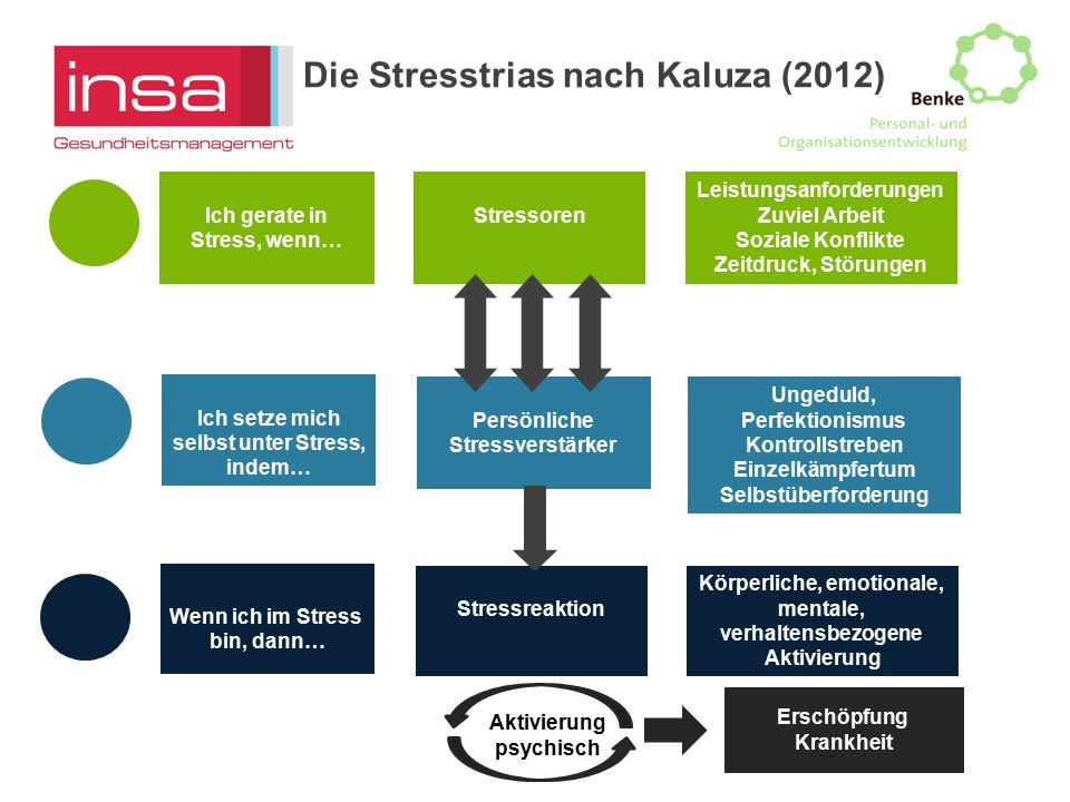 Die Stresstrias nach Kaluza (2012)