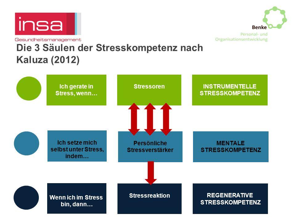 Die 3 Säulen der Stresskompetenz nach Kaluza (2012)
