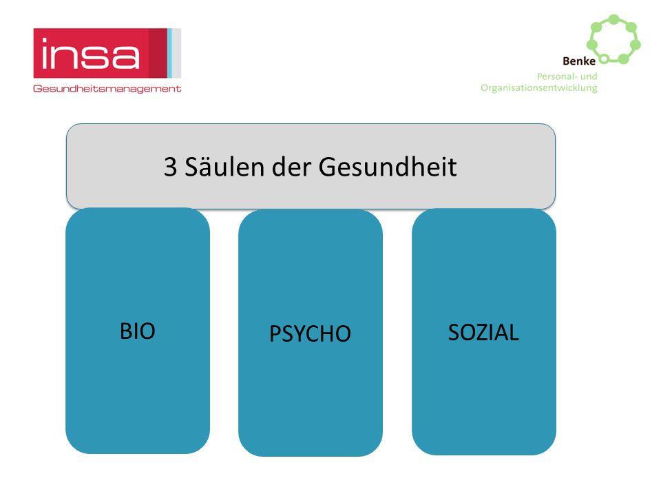 3 Säulen der Gesundheit BIO PSYCHO SOZIAL