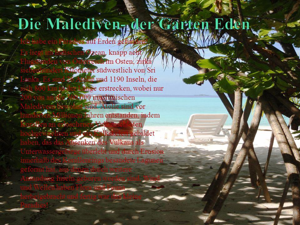 Die Malediven- der Garten Eden