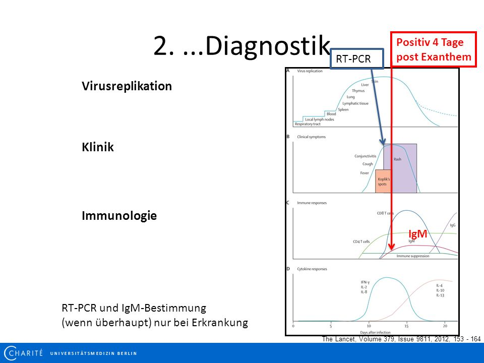 2. ...Diagnostik Virusreplikation Klinik Immunologie