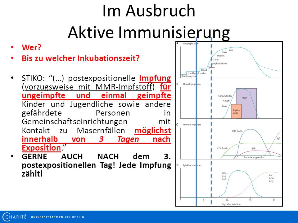 Im Ausbruch Aktive Immunisierung