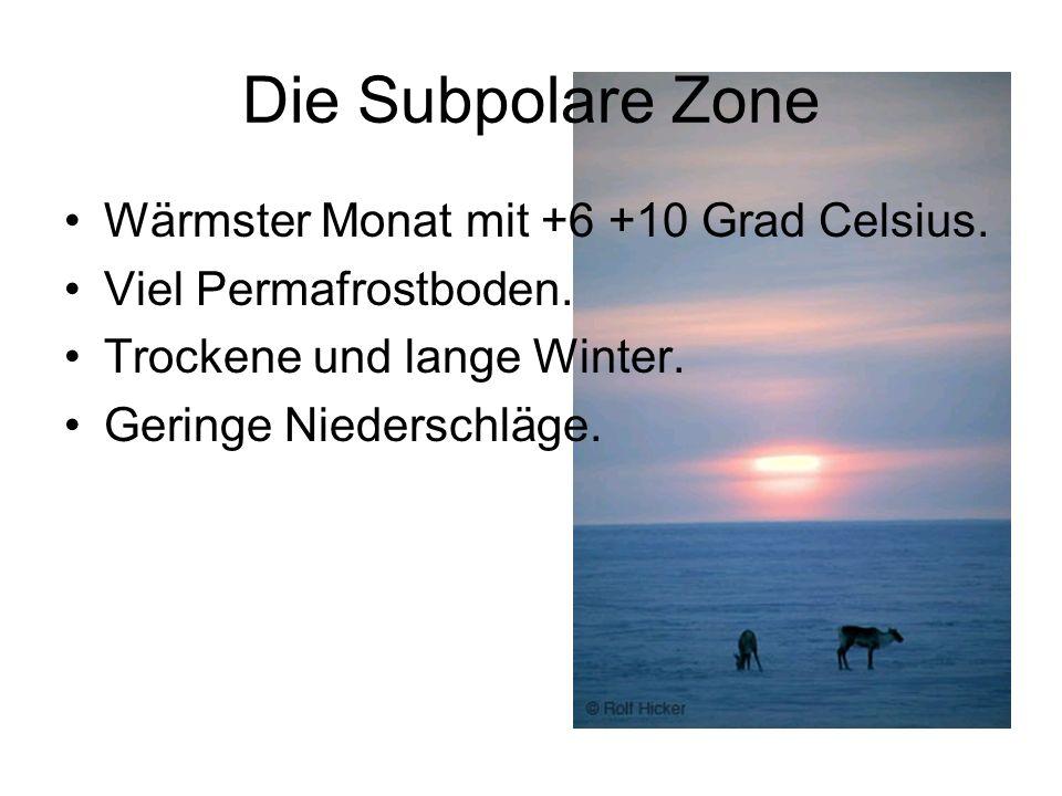 Die Subpolare Zone Wärmster Monat mit +6 +10 Grad Celsius.