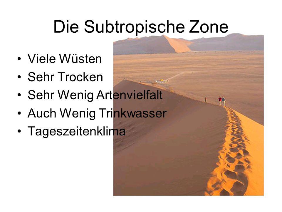 Die Subtropische Zone Viele Wüsten Sehr Trocken