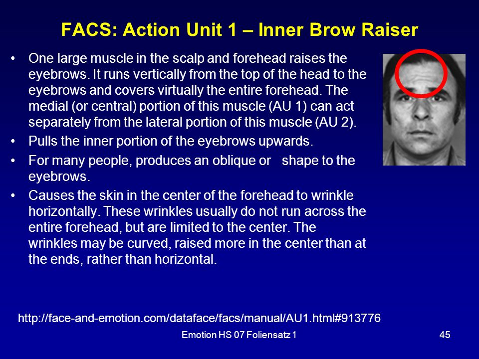 FACS: Action Unit 1 – Inner Brow Raiser