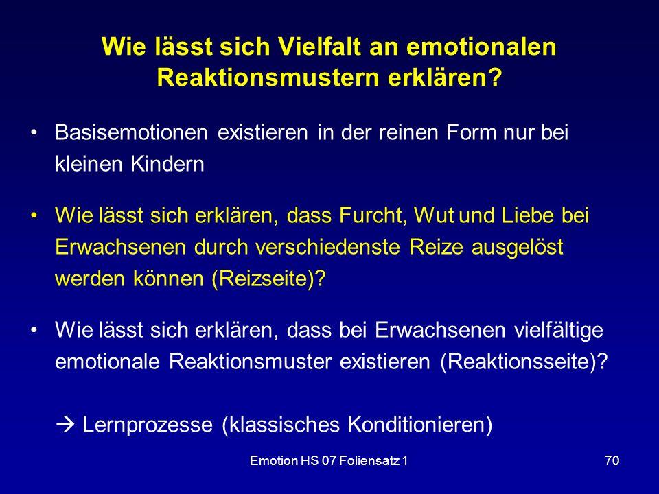 Wie lässt sich Vielfalt an emotionalen Reaktionsmustern erklären