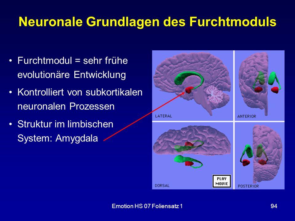 Neuronale Grundlagen des Furchtmoduls