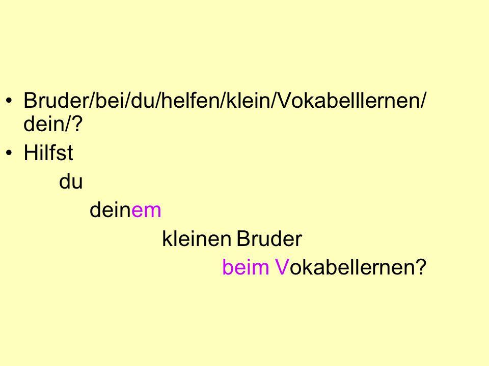 Bruder/bei/du/helfen/klein/Vokabelllernen/ dein/