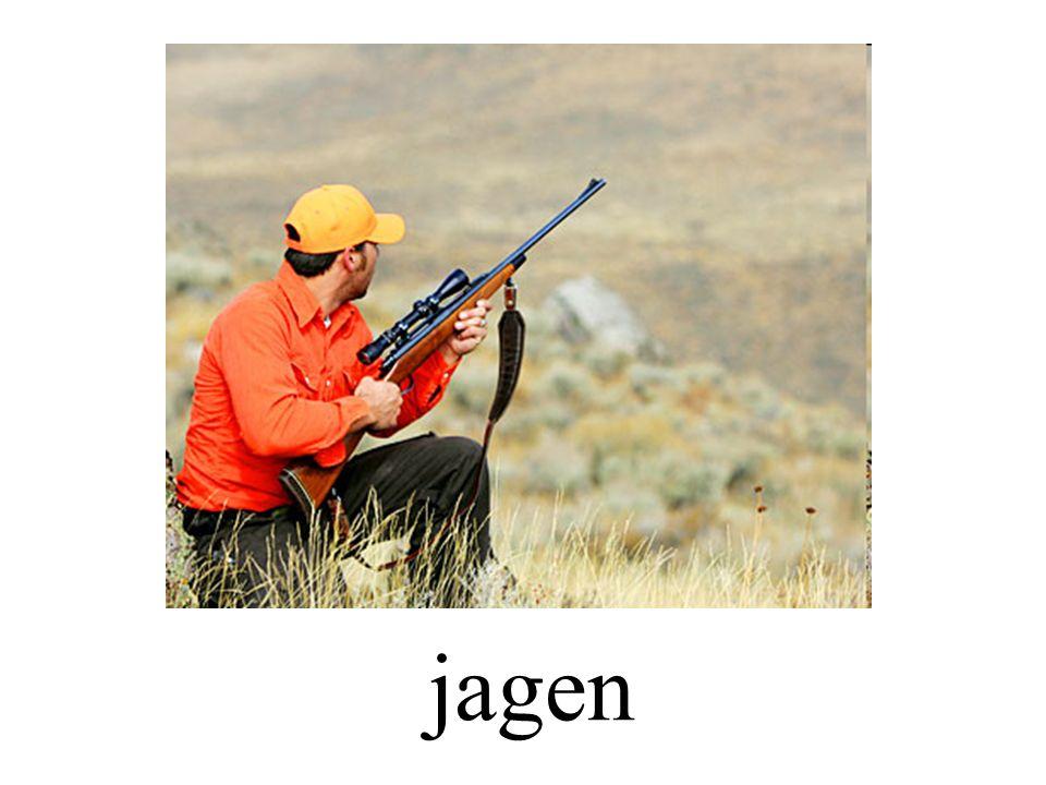 jagen