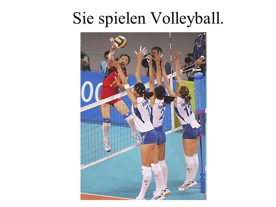 Sie spielen Volleyball.