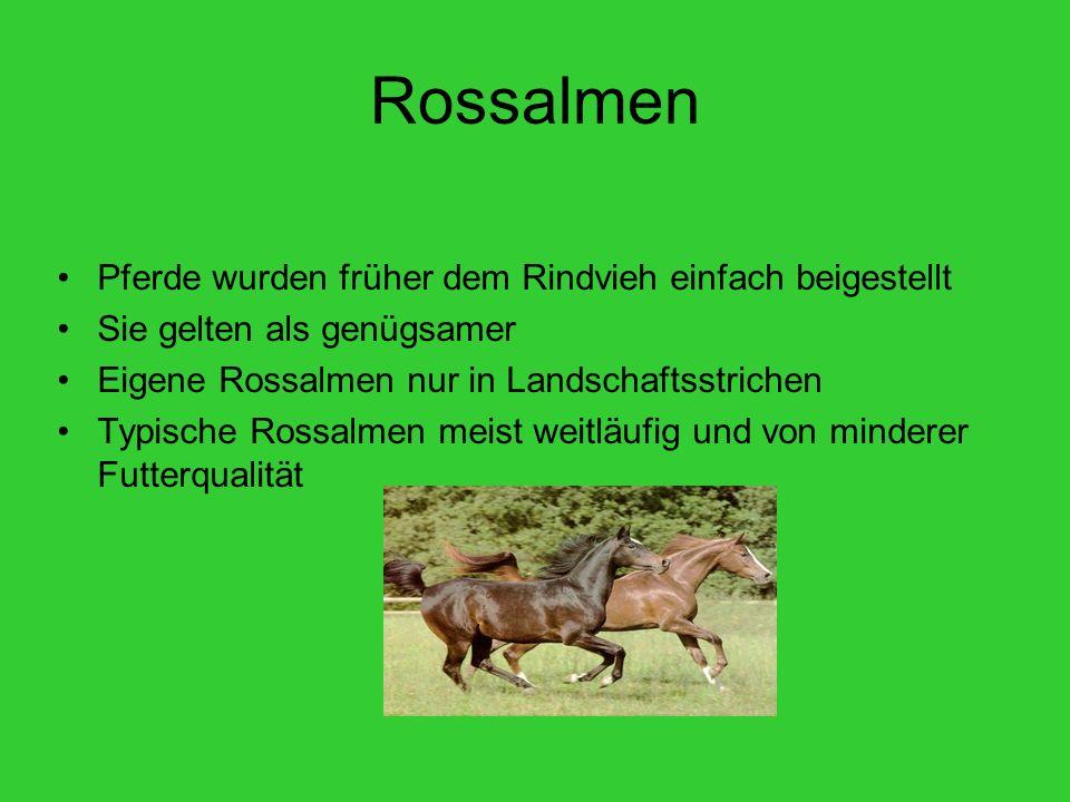 Rossalmen Pferde wurden früher dem Rindvieh einfach beigestellt